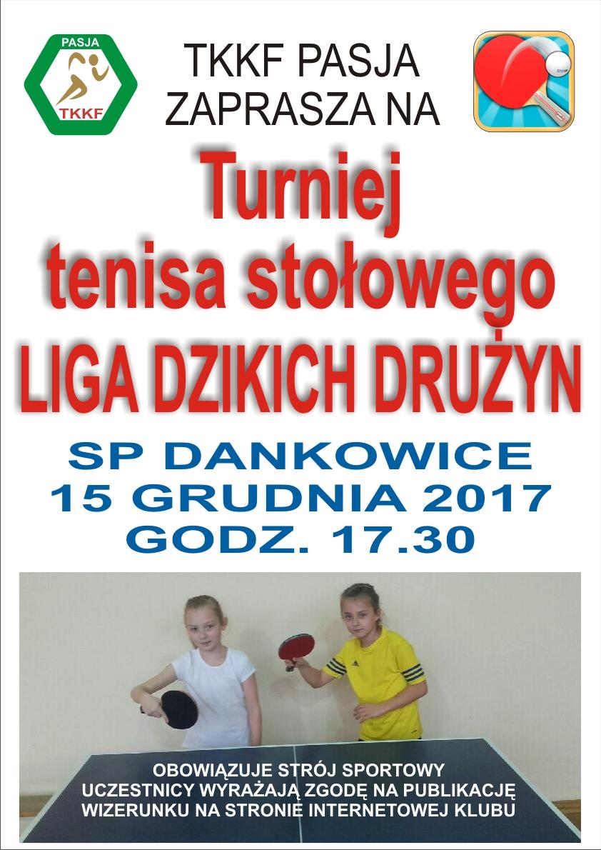LIGA_DZIKOW17